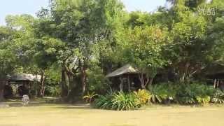 wltoys v977 power star x1 brushless helicopter official video