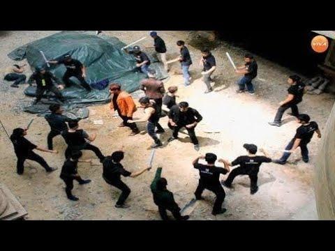 Phim Hành Động Xã Hội Đen - Cuộc Chiến Đẩm Máu - Lồng Tiếng - Viva Style