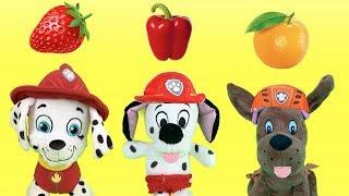 Juguetes paw patrol español:peppa pig y bebes patrulla canina aprender frutas.Nuevo video educativo