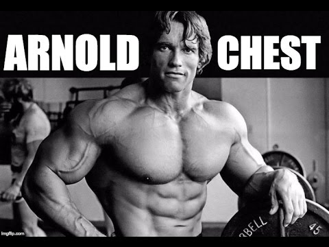 Arnold schwarzeneggers full beast chest workout for maximum gains arnold schwarzeneggers full beast chest workout for maximum gains malvernweather Image collections