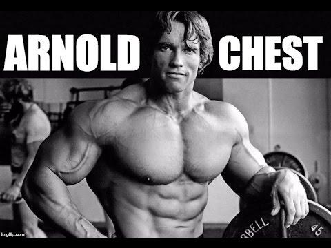 Arnold schwarzeneggers full beast chest workout for maximum gains arnold schwarzeneggers full beast chest workout for maximum gains malvernweather Gallery