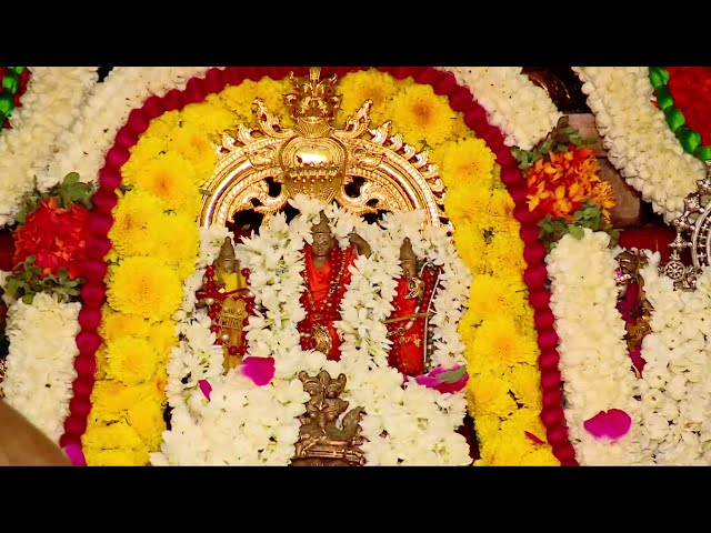 87th Thirunakshatram Celebrations of HH Srimad Srimushnam Periandavan Sri Rangaramanuja Mahadesikan