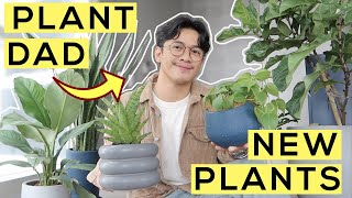 My Indoor Plants at #CasaGuisado! (+ Unboxing)