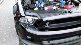 2013 Shelby GT500 Black Limited Production
