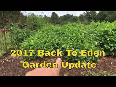 2017 Back To Eden Garden Update ~ WOW !