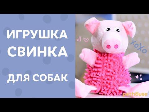 Игрушка из ковра?! Плюшевая свинка Shaggy Pig для собак | Обзор от Pethouse.ua