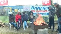 Les pouvoirs publics au chevet de Banania à Faverolles