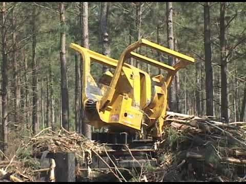 Tigercat 234 Delimbing wood with Hydra Gate | Doovi