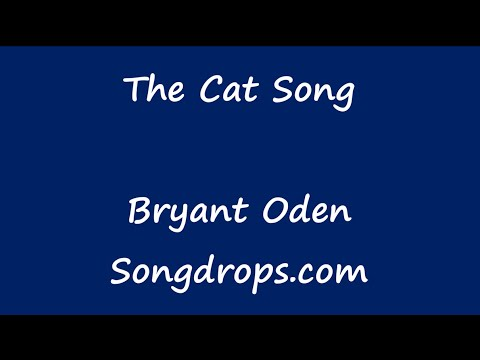 Funny Song: The Cat Song