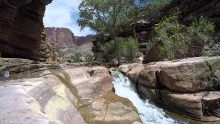 Grand Canyon & Colorado River White Water Rafting Trip Highlights August 2015