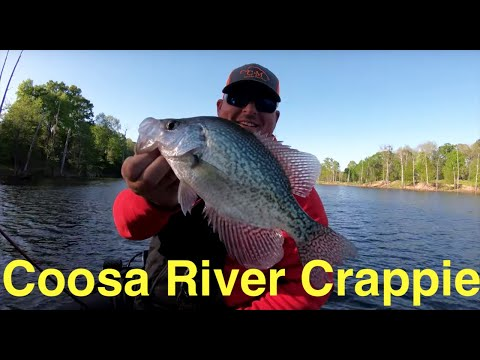 Coosa River Crappie Fishing