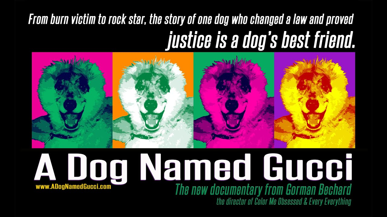 A Dog Named Gucci Trailer