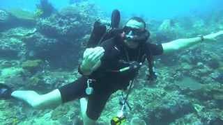 Khaled Zaki  Diving & Dolphin Dragger SCCR Rebreather