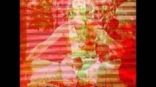 Dr Timothy Leary - Rzeczywistość jest względna (Any reality is an opinion polish subs)