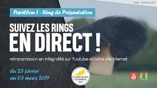 Ring de présentation 02/03/2019