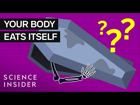 What Happens To Your Body 100 Years After Death