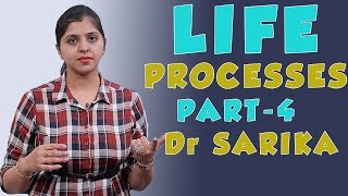 Life Processes for Class 10 | Excretion In Humans | Science / Biology | Dr. Sarika