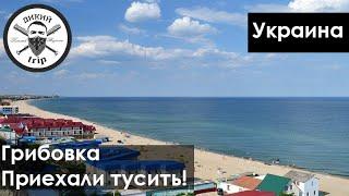 Отдыхаем в Грибовке | Черное Море, Украина, съемка с дрона, пляж, цены, прогулка, отзыв, влог
