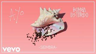 Bomba Estéreo - Siembra (Audio)