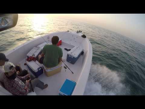 Qatar Angler bottom Emperor fishing