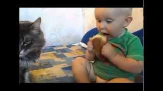 Прикол! ДЕТИ vs КОТЫ: дети в борьбе с котами, КТО КОГО? Смешная озвучка