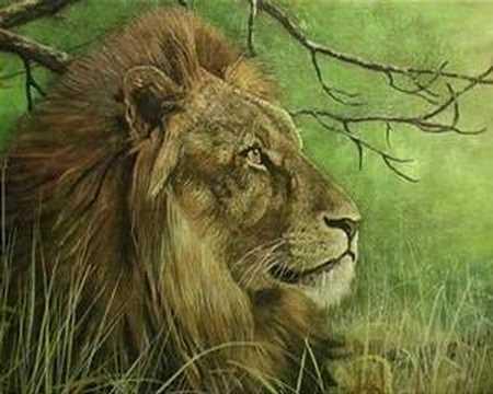 African Wildlife Art, South Africa