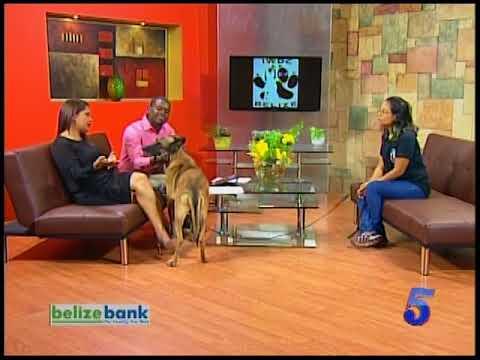 Belize International Working Dog Centers [IWDC].