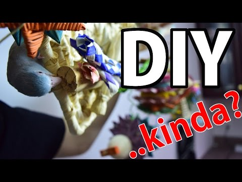 Where Do You Buy Your Toys?! | DIY