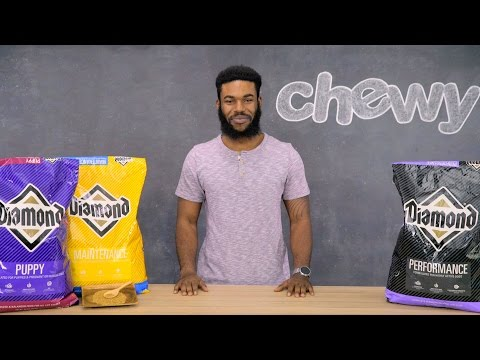 Diamond Dog Food | Chewy