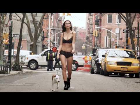 Emily Ratajkowski Walks Her Dog in Lingerie, as One Does