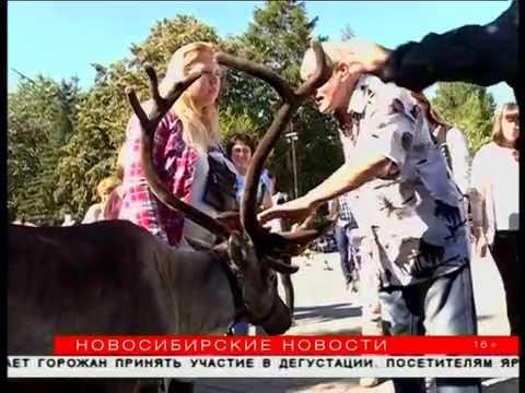 знакомства новосибирск виктория