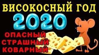 ВИСОКОСНЫЙ 2020 ГОД Что Нельзя Делать в это время ГОД КРЫСЫ. ГОРОСКОП 2020