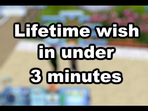The Sims 3 Speedrun: