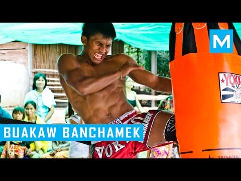 Buakaw Banchamek Hardcore Muay Thai Training | Muscle Madness