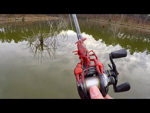 Spawning Bass Destroy New Crawfish Lure!