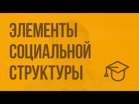 Основы социальной работы Шпаргалка кратко, самое главное