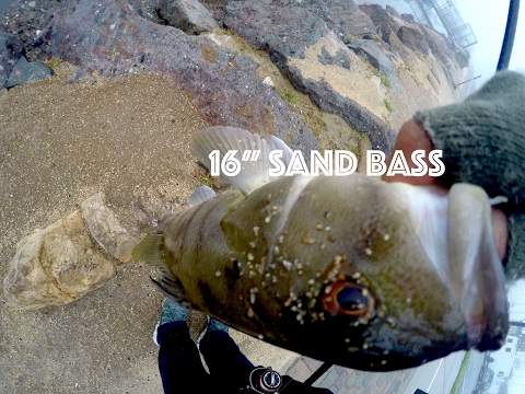 Socal saltwater fishing  | The fog and rain are dope 2017 ! Sand and Spotted Bay Bass!!