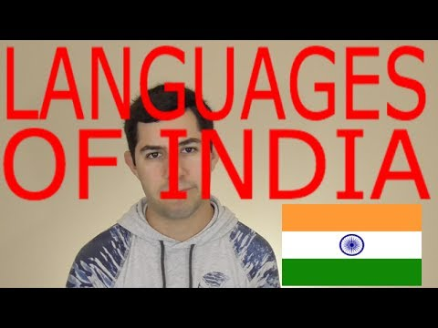 Languages of INDIA! (Languages of the World Episode 11)