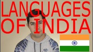 Languages of INDIA! (Languages of the World Episode 11)
