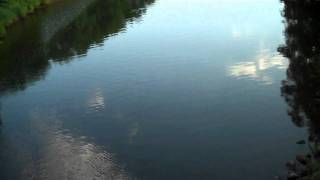 Fishing Durham Bridge, West River of Pictou (2)