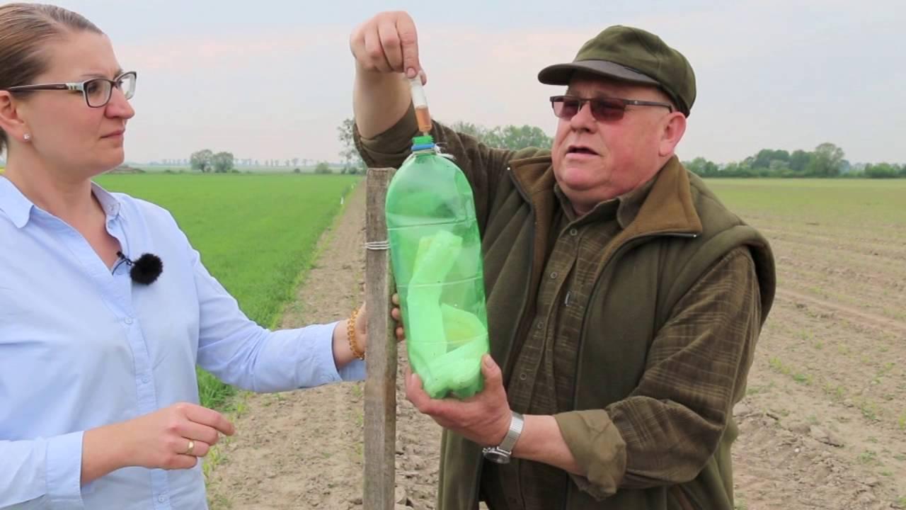 Nowość Pieluchy, petardy i papryczka chili, czyli rolnika sposoby na dzika NF12