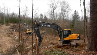160 Excavator Clearing Trees
