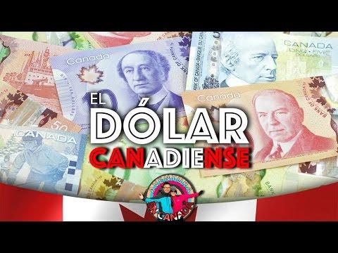 EP.11 El Dólar Canadiense | AVENTURA EN CANADÁ