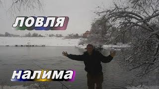 Ловля налима осенью на реке Рыбалка на Протве Налим на червя Налим в ноябре Закрытие сезона 2020г