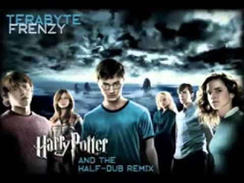 Harry Potter and the HalfDub Remix