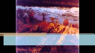 Rolf Lislevand - Nuove Musiche : Passacaglia Cantus Firmus / Celtica