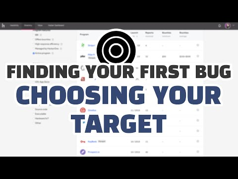 finding-your-first-bug:-choosing-your-target