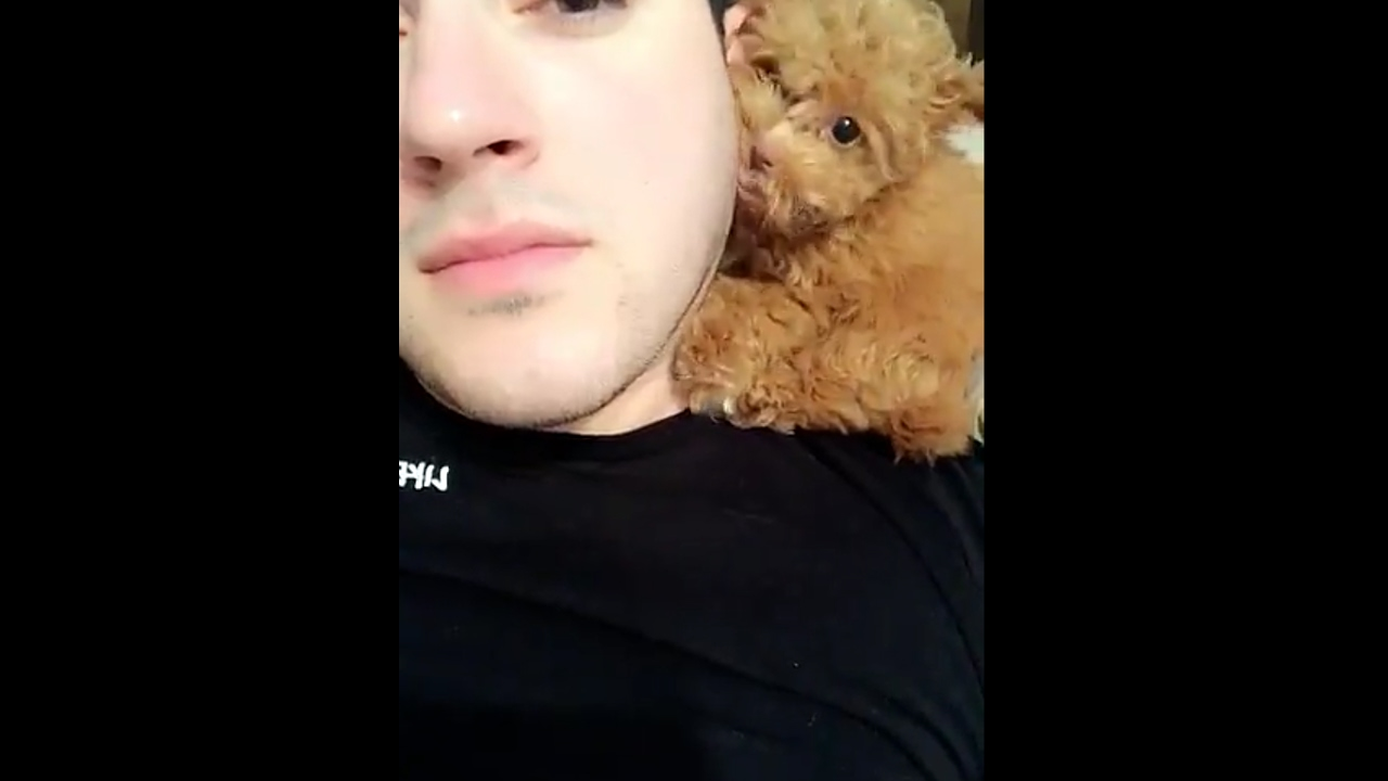 What kind of dog does manny mua have