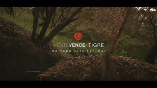 Mente Vence Tigre - No todo está tan mal