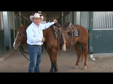 How to Choose a Saddle Pad with Ken McNabb